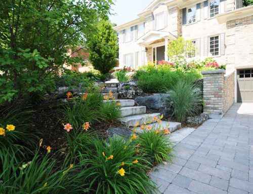 Why Stone Driveways are So Popular