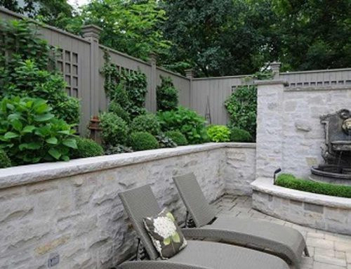 5 Recommendations for Low-Maintenance Yards in Burlington and the Surrounding Area